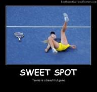 Sweet Spot Best Demotivational Posters