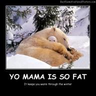 Yo Mama Is So Fat