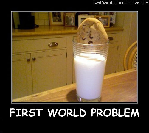 First World Problem Best Demotivational Posters