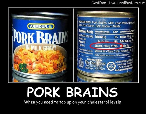 Pork Brains Best Demotivational Posters