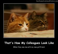 That's How My Colleagues Look Like