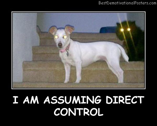 I Am Assuming Direct Control Best Demotivational Posters