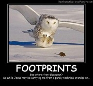 Footprints Best Demotivational Posters
