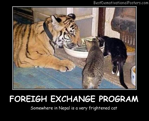 Foreign Exchange Program Best Demotivational Posters