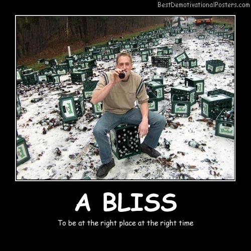 A Bliss Best Demotivational Posters