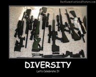 Diversity Guns