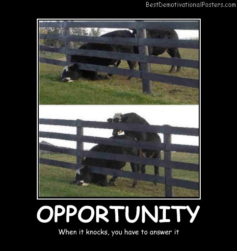 Opportunity When It Knocks Best Demotivational Posters