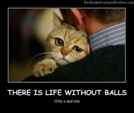 There Is Life Without Balls