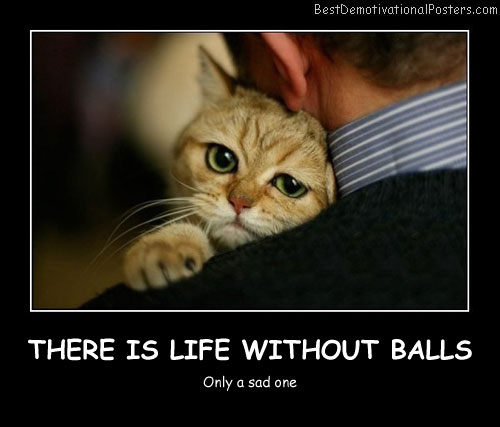 There Is Life Without Balls Best Demotivational Posters