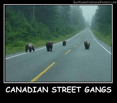 Canadian Street Gangs - Best Demotivational Posters