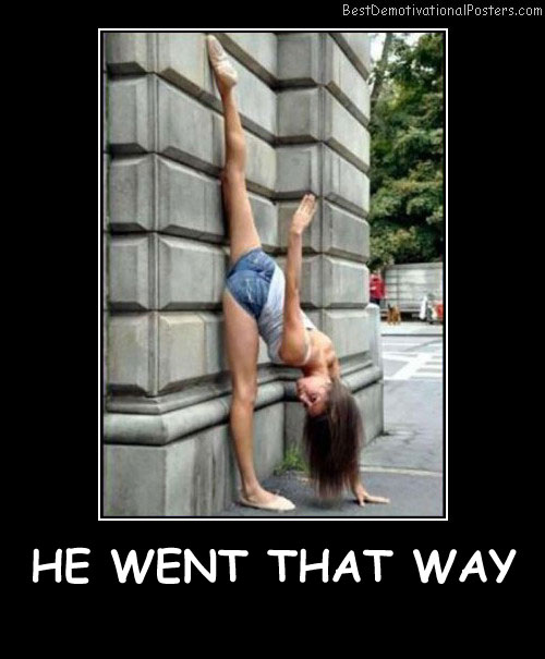 He Went That Way - Best Demotivational Posters