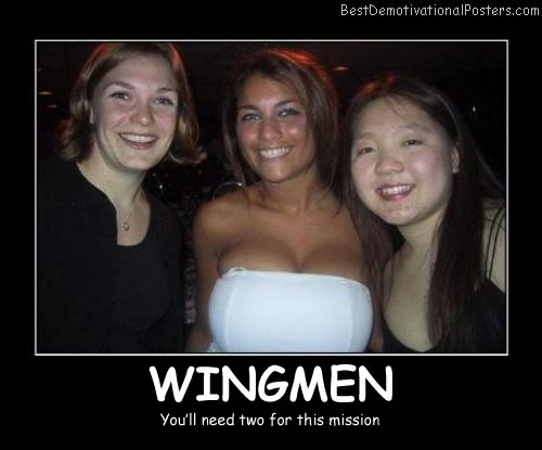 Wingmen Mission Best Demotivational Posters