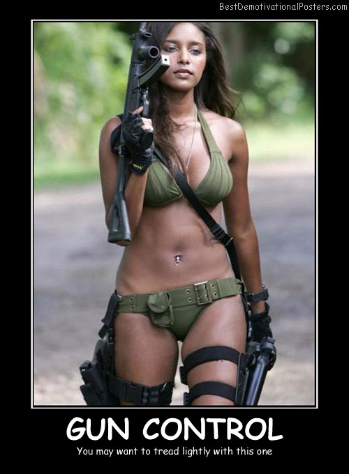 Gun Control - Best Demotivational Posters