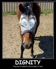 Dignity - Best Demotivational Posters