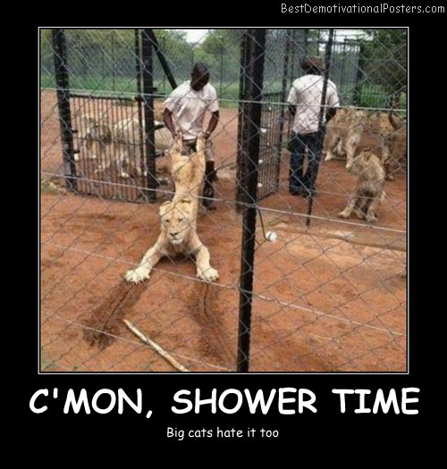 C'mon, Shower Time - Best Demotivational Posters