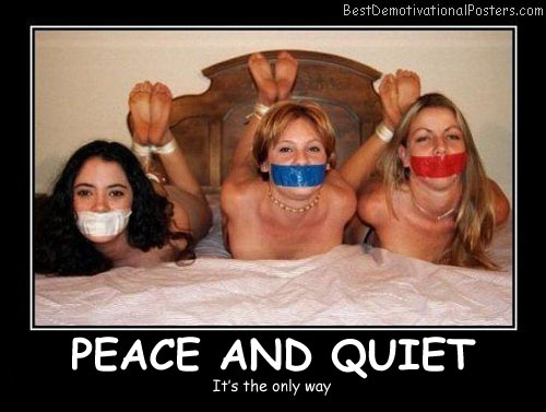 Peace And Quiet - Best Demotivational Posters