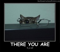 There You Are