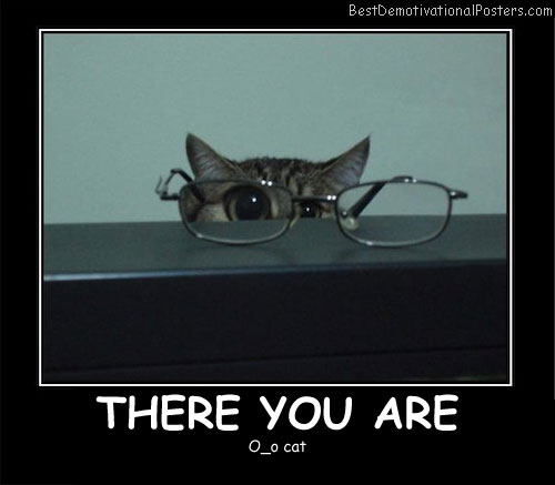 There You Are - Best Demotivational Posters