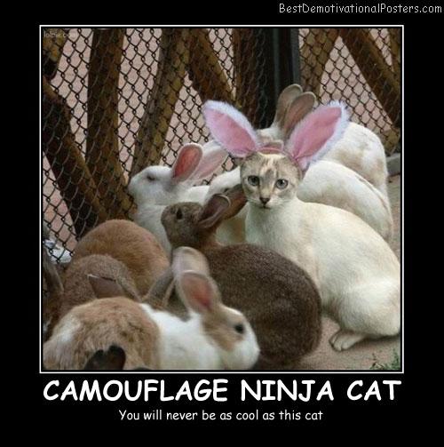 Camouflage Ninja Cat - Best Demotivational Posters