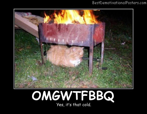 OMGWTFBBQ - Best Demotivational Posters