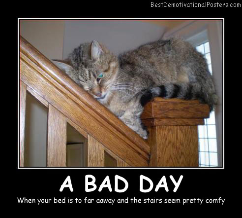 A Bad Day - Best Demotivational Posters