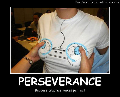 PERSEVERANCE - Best Demotivational Posters